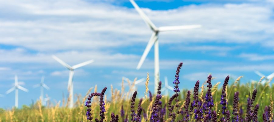 green energy from wind