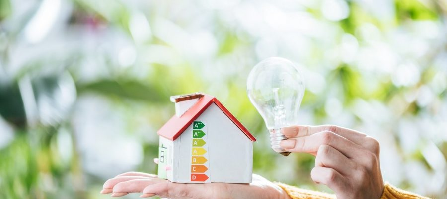 cropped view of woman holding led lamp and carton house, energy efficiency at home concept